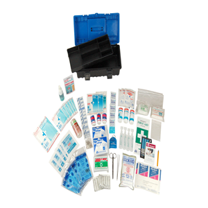 Standard Workplace First Aid Kit in Plastic Case